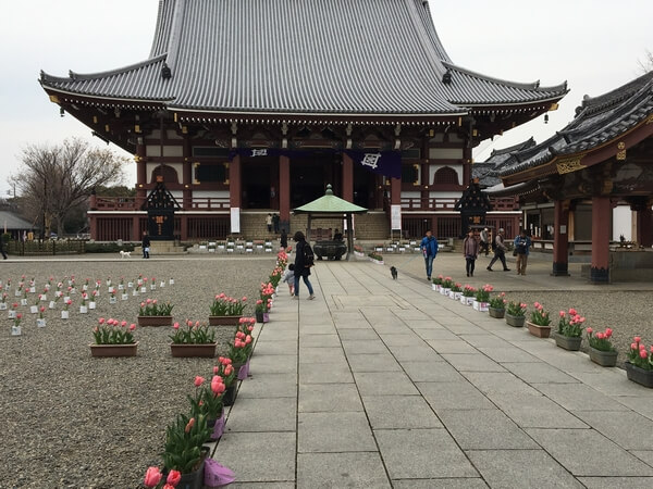 honmonji1
